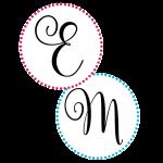 EM Circle Icons