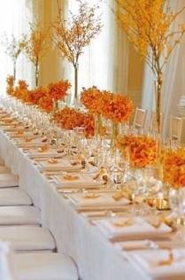 orange-table